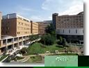 桜美林大学